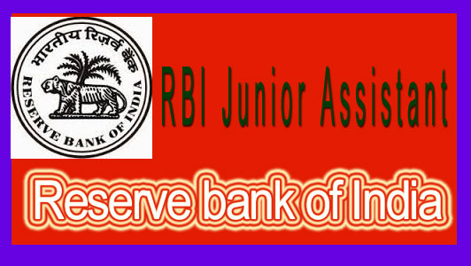RBI assistant answer key 2015