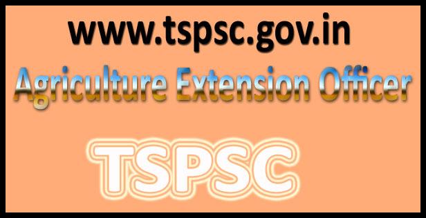 TSPSC AEO Syllabus 2016